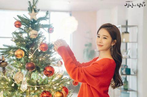 Christmas ornament, Christmas tree, Christmas decoration, Christmas, Tree, Christmas eve, Ornament, Interior design, Tradition, Plant,