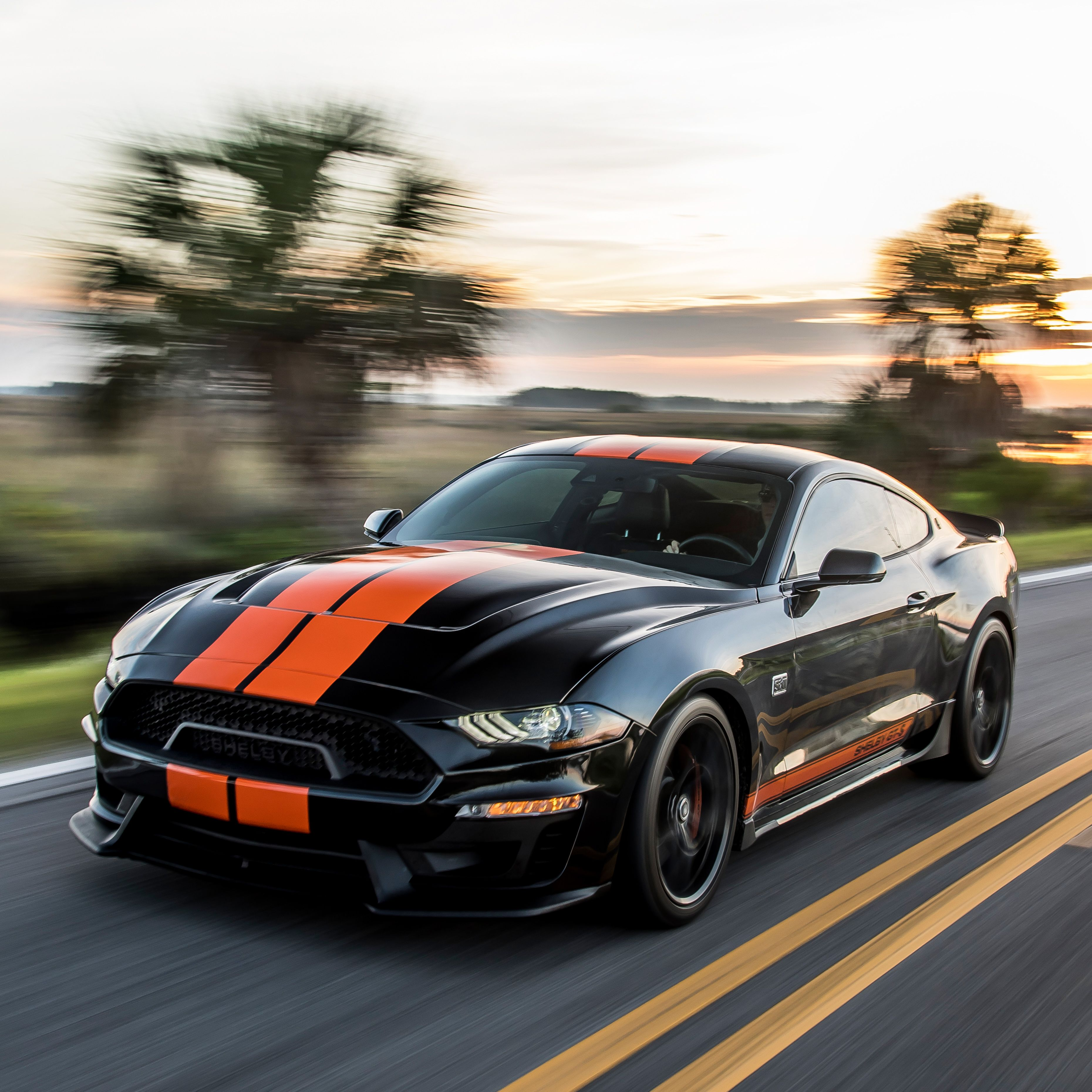 2019 Ford Mustang Shelby Gt S Is A Rental Car We Can Dig