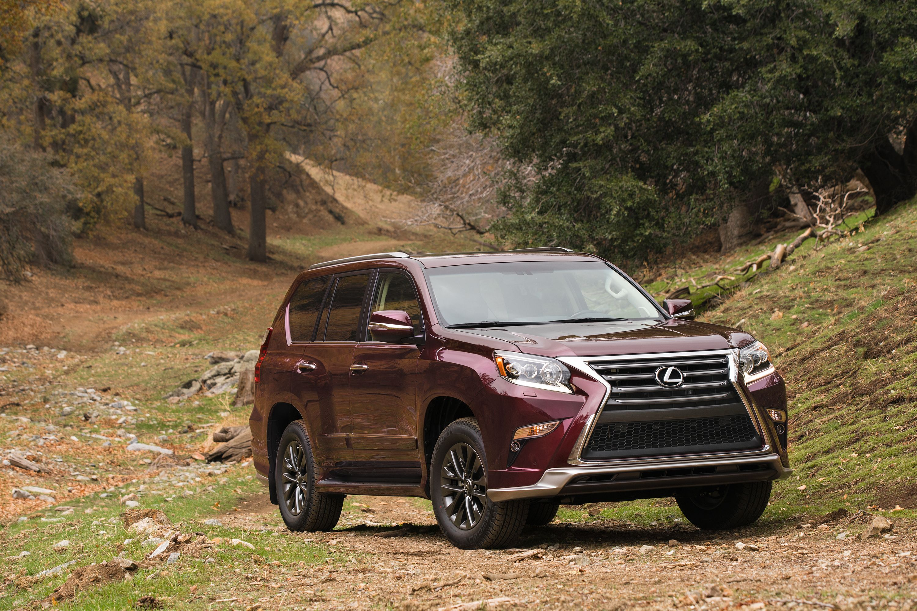 2019 Lexus Gx Review Pricing And Specs