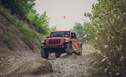Land vehicle, Off-roading, Automotive tire, Vehicle, Tire, Off-road vehicle, Regularity rally, Car, Jeep, Jeep wrangler,