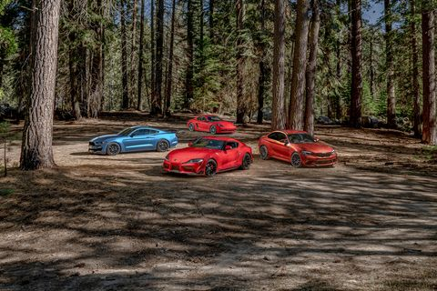 Land vehicle, Vehicle, Car, Tree, Subcompact car, Sports car, State park, Supercar, Forest, Woodland,