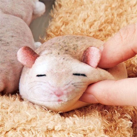 日本爆紅「倉鼠衛生紙」盒太可愛了!圓滾滾的倉鼠小屁屁,每一隻都想用力捏捏啦