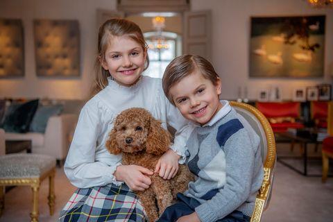 princess estelle ninth birthday dog