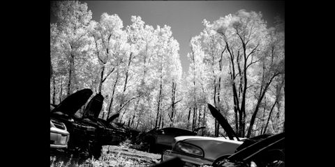 infrared film photographs in wisconsin car graveyard