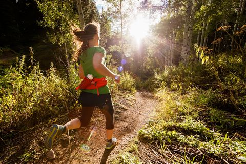 People in nature, Trail, Nature, Green, Natural landscape, Vegetation, Sunlight, Wilderness, Light, Natural environment,