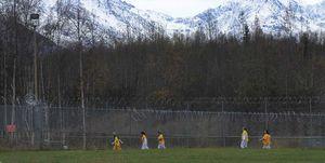 Running Free Alaska