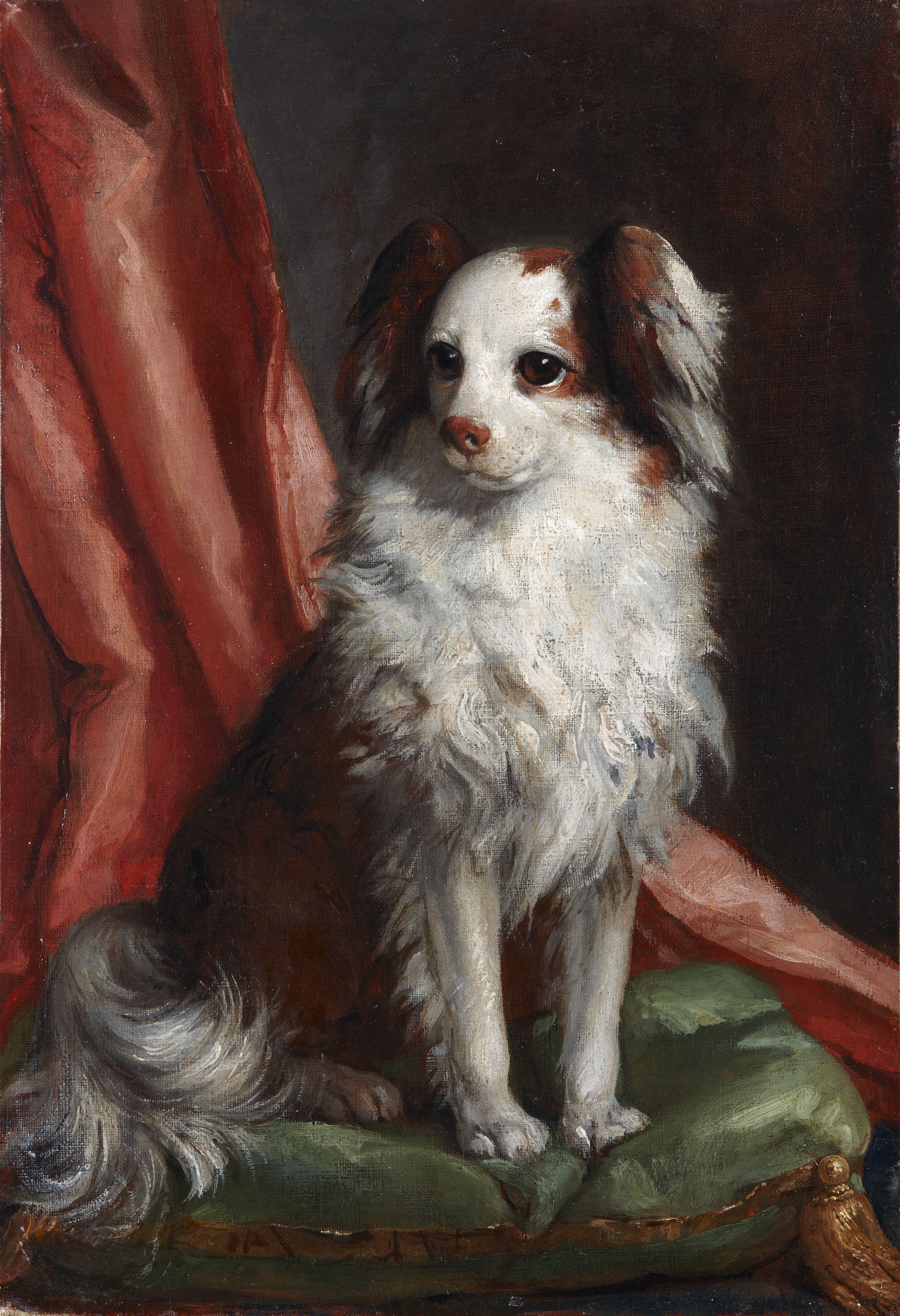 tiepolo-cani