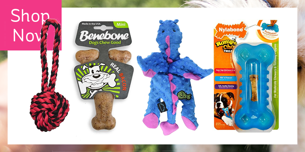 25+ Indestructible Dog Toys for the Pet That Loves to Che
