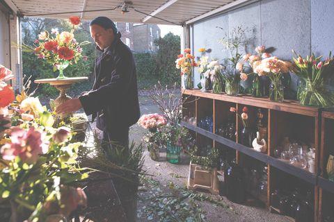 Floristry, Flower, Floral design, Plant, Botany, Houseplant, Flower Arranging, Greenhouse, Organism, Garden,