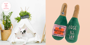 Pet Gifts to Give Your Dog or Cat a Pawsome Holiday