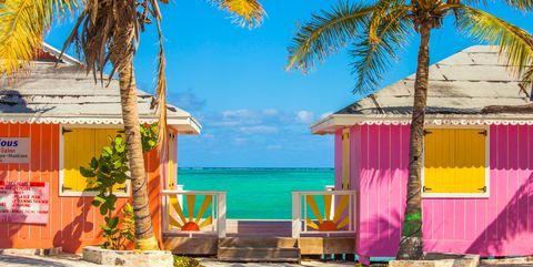 Tree, Palm tree, Tropics, Vacation, Majorelle blue, Caribbean, Arecales, Summer, Yellow, House,