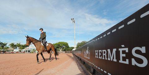 Hermes Palm Beach Horse