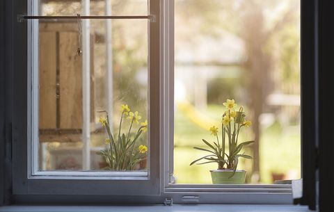 You Leave Doors and Windows Open, seasonal allergies