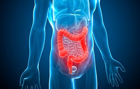 inflammation in intestines