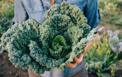 kale for liver health
