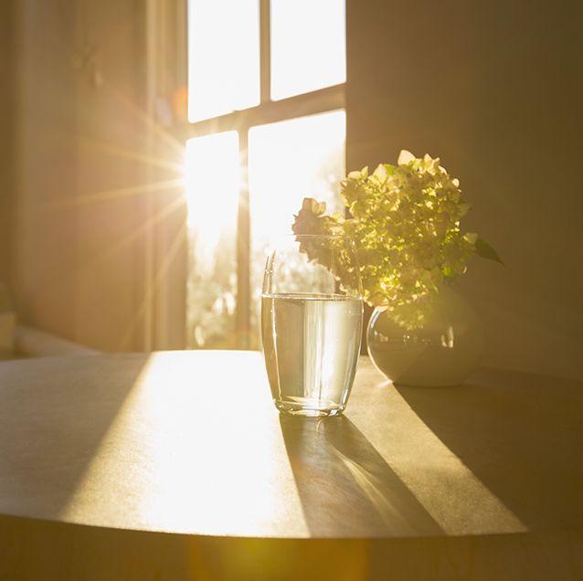follow sun