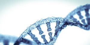 DNA test kit reviews