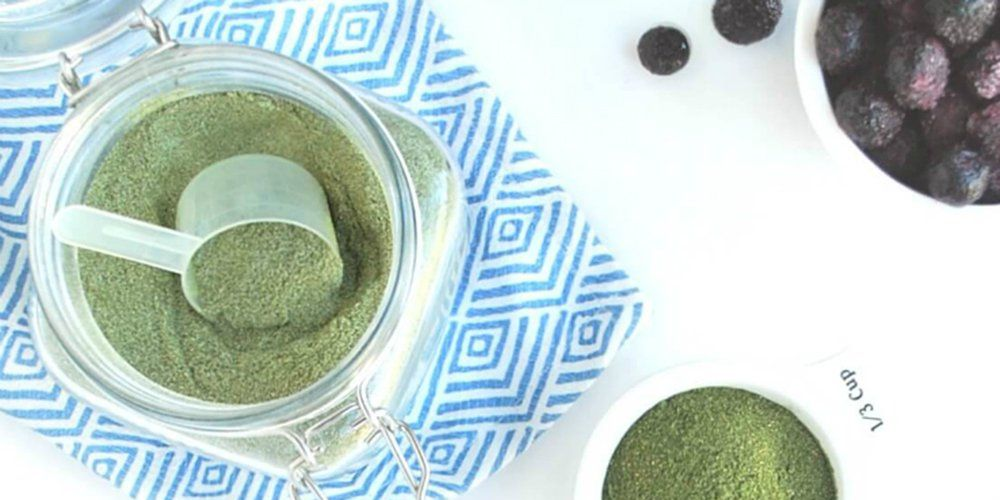 3 Ways To Make Your Own Protein Powder (And Save Money)