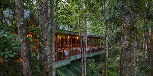 Silky Oaks Lodge, Mossman