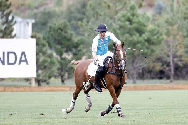 prince harry charity polo match