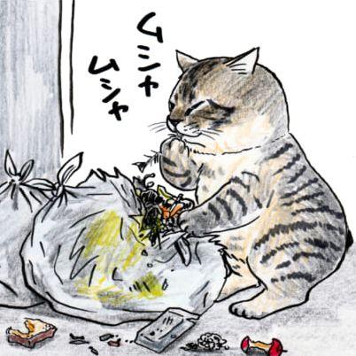 俺、つしま日本超人氣漫畫叫我對大哥扭蛋