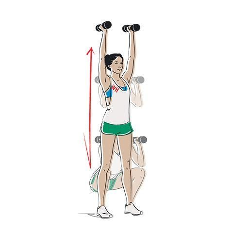 Shoulder, Arm, Joint, Standing, Exercise equipment, Leg, Muscle, Weights, Barbell, Physical fitness,