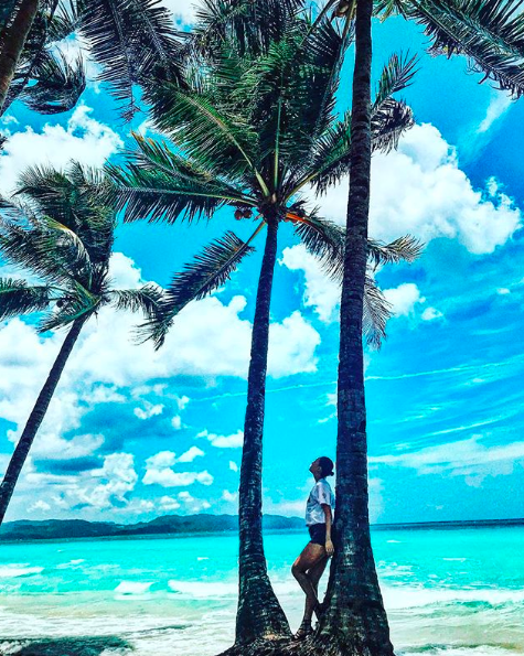 Tree, Palm tree, Sky, Tropics, Vacation, Woody plant, Arecales, Ocean, Plant, Caribbean,