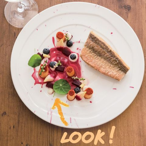 ナスタチウム|料理を輝かせる、おしゃれハーブ図鑑