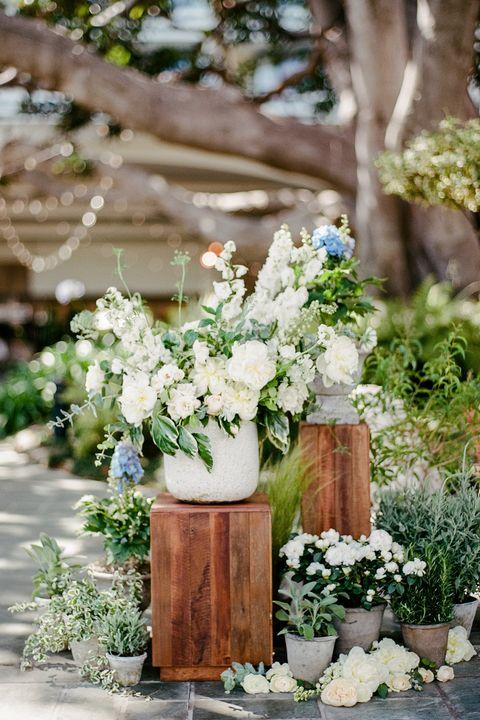 Flower, White, Flower Arranging, Bouquet, Floristry, Floral design, Cut flowers, Flowerpot, Plant, Centrepiece,