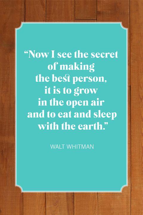 camping quotes walt whitman
