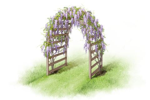 Garden arch illustrations