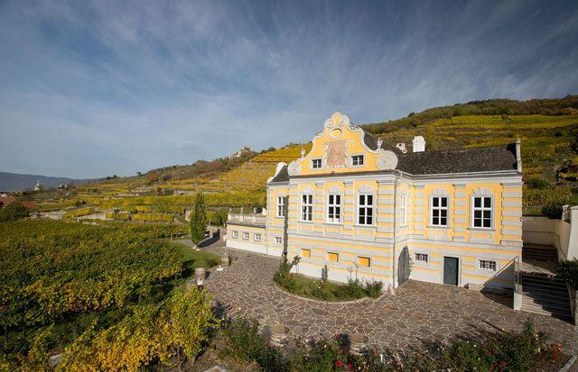 domane wachau vineyard austria