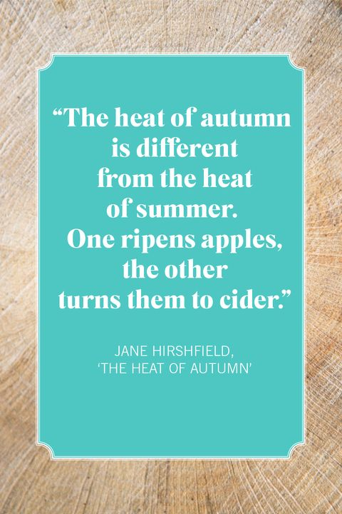fall quotes jane hirshfield, 'the heat of autumn'