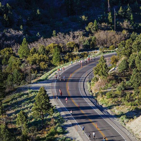 Road, Tree, Transport, Thoroughfare, Highway, Sky, Aerial photography, Lane, Freeway, Infrastructure,