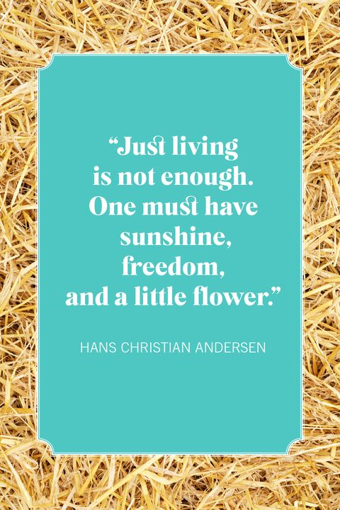 nature quotes hans christian andersen