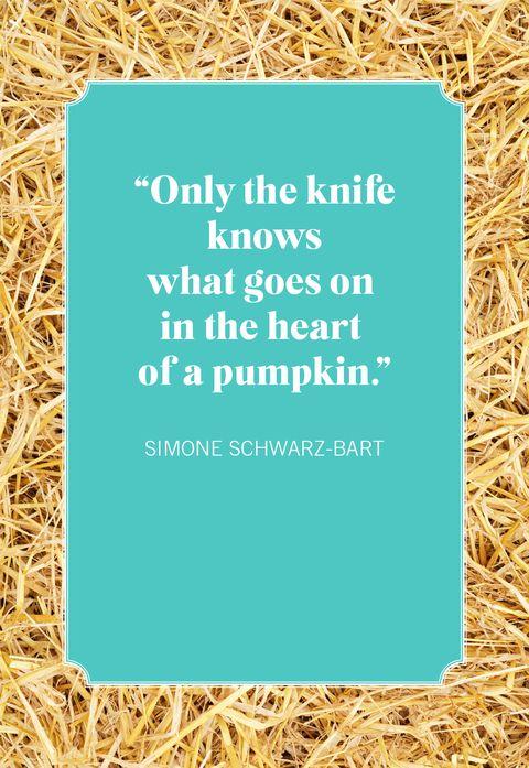simone schwarzbart pumpkin quotes