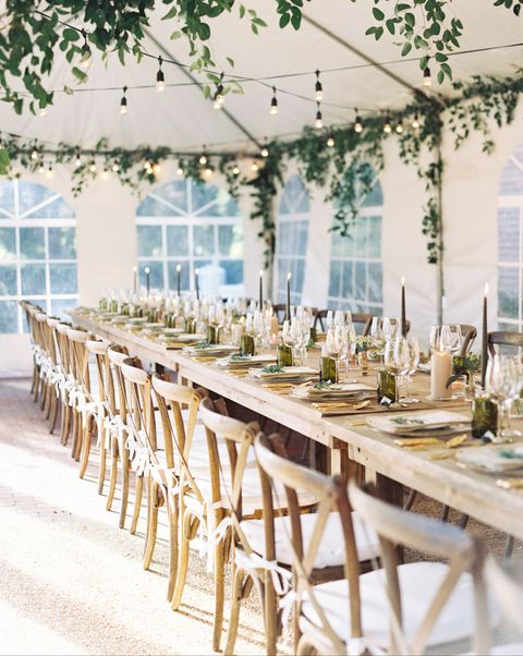 Table, Chair, Rehearsal dinner, Furniture, Yellow, Chiavari chair, Room, Branch, Wedding reception, Interior design,