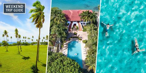 Tree, Tourism, Azure, Vacation, Adaptation, Leisure, Travel, Summer, Landscape, Real estate,