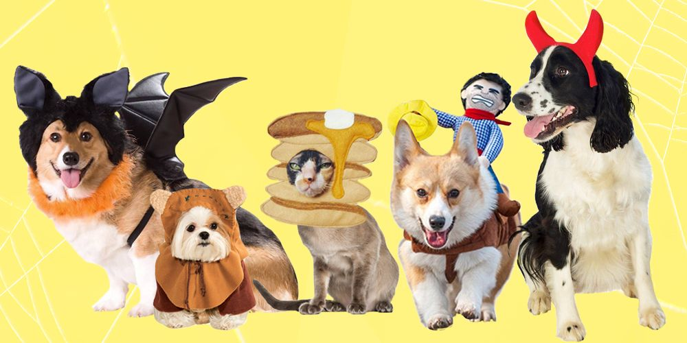 Creative Halloween Costumes for Dogs and Cats & 30 Best Dog and Cat Halloween Costumes 2018 - Cute Pet Costume Ideas