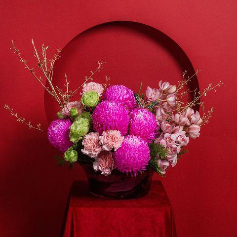 粉色的花後面是紅色背景