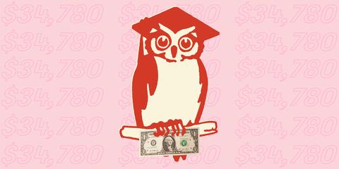 Owl, Red, Illustration, Pink, Cartoon, Bird, Graphic design, Drawing, Bird of prey, Art,