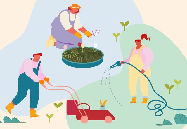 365 day timeline of caring for your lawn