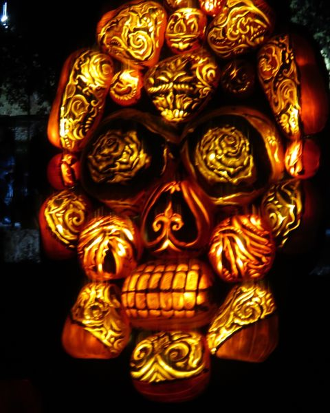 Halloween Movie Pumpkin Drawing.50 Cool Pumpkin Carving Designs Creative Ideas For Jack O Lanterns
