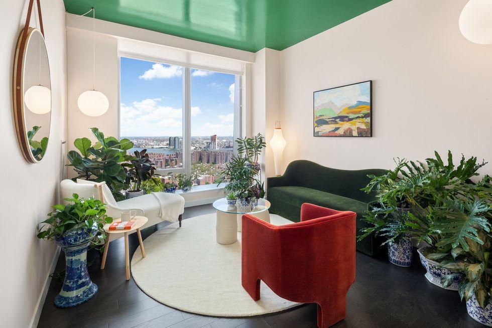 25 Best Indoor Apartment Plants to Buy Online Right Now