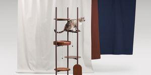 Katten musthaves - deze design katten krabpaal is de musthaves voor iedere kattenvrouw
