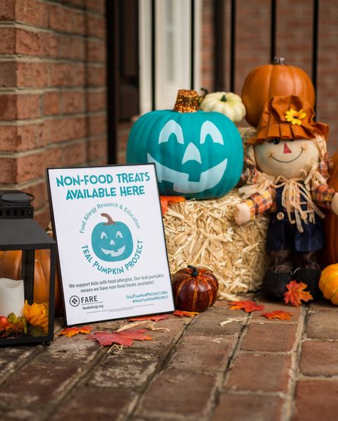 Pumpkin, trick-or-treat, Winter squash, Calabaza, Orange, Jack-o'-lantern, Cucurbita, Gourd, Room, Floor,