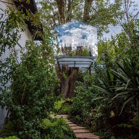 Vegetation, Botanical garden, Botany, Garden, Tree, Biome, Jungle, House, Rainforest, Plant,