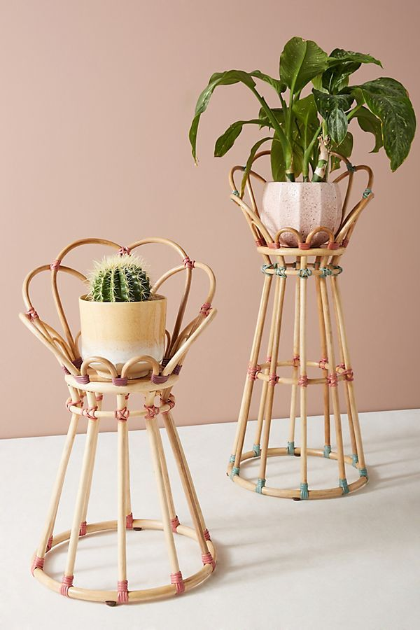 18 Totally Chic Planters You Can Buy Right Now
