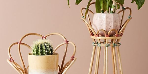 18 Stylish Indoor Flower Pots - Affordable Indoor Pots for Your Plants