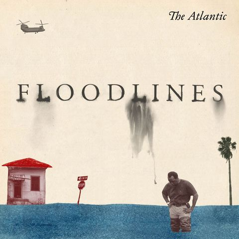 cover art of 'floodlines'